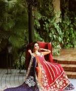 Teena by Hina Butt Formal Dresses 2014 for Women003