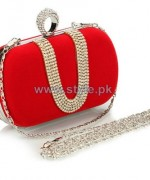 Desire Accessories Party Wear Clutches 2014 For Girls 4