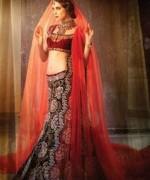 Indian Wedding Dresses 2013 Ideas For Girls 007