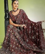 Indian Wedding Dresses 2013 Ideas For Girls 011