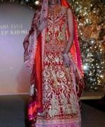 Indian Wedding Dresses 2014 For Girls  007