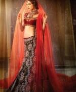Indian Wedding Dresses 2014 For Girls  008