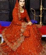 Pakistani Full Sleeve Wedding Dresses 2014 008