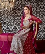 Pakistani Full Sleeve Wedding Dresses 2014 009