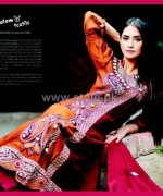 Salam's Textile Winter Dresses 2014 For Women 7
