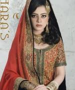Bridal Wear Dresses 2014 by Thara's003