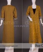 Daaman Spring Dresses 2014 For Women 11