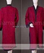 Daaman Spring Dresses 2014 For Women 13