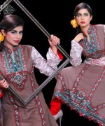 Ghani Textile Party Dresses 2014 For Women 006