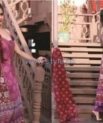 Shariq Textiles Libas Lawn Dresses 2014 Volume 2 9