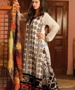 Strawberry Embroidered Chiffon Dresses 2014 For Women 11