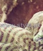 Elan Lawn Dresses 2014 For Summer 5