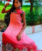 Salma Dawood Formal Dresses 2014 For Women 001