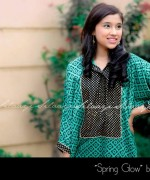 Silaayi Spring Dresses 2014 For Women 004