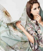 Sitara Textiles Chiffon Lawn Dresses 2014 For Women 0012