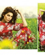 Sitara Textiles Lawn Dresses 2014 Volume 1 For Women 007