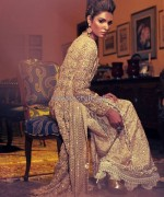 Delphi Wedding Couture Dresses 2014 For Girls 2
