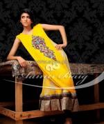Aamir Baig Formal Dresses 2014 For Summer 2