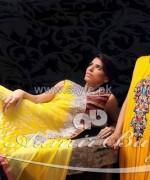 Aamir Baig Formal Dresses 2014 For Women 7