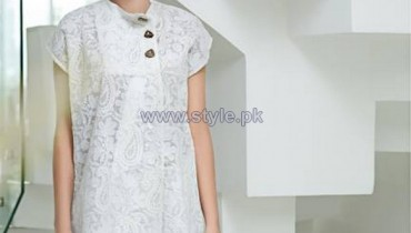 Cynosure Chikankari Collection 2014 For Summer 5