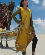 Dicha Embroidered Lawn Dresses 2014 For Eid 5