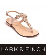 Lark & Finch Eid Collection 2014 For Women 0011