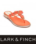 Lark & Finch Eid Collection 2014 For Women 0012