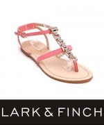 Lark & Finch Eid Collection 2014 For Women 0014