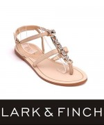 Lark & Finch Eid Collection 2014 For Women 0017