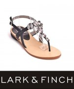 Lark & Finch Eid Collection 2014 For Women 004