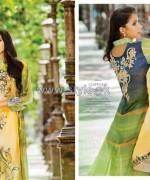Resham Ghar Chiffon Dresses 2014 For Women 8
