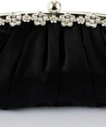 Fashion Of Fancy Clutches 2014 For Women 0010