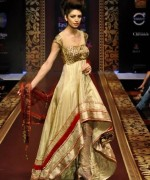 Fashion Of Indian Wedding Dresses 2014 For Women 001