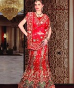 Fashion Of Indian Wedding Dresses 2014 For Women 0013