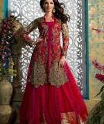 Fashion Of Indian Wedding Dresses 2014 For Women 0015