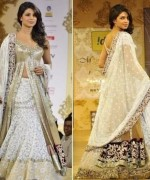 Fashion Of Indian Wedding Dresses 2014 For Women 005