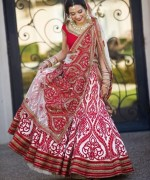Fashion Of Indian Wedding Dresses 2014 For Women 007