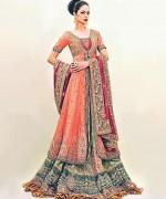Multi Color Pakistani Bridal Dresses 2014 For Women 002