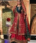 Multi Color Pakistani Bridal Dresses 2014 For Women 004