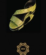 Zed Footwear Collection 2014 For Women 008