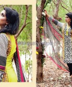 Amna Ismail Imperial Lawn Dresses 2014 For Mid Summer 1