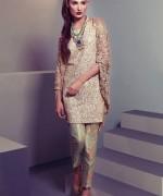 Delphi Eid Ul Azha Collection 2014 For Women 005
