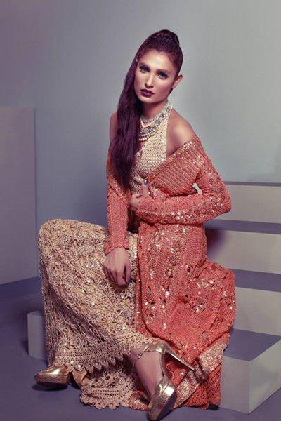 Delphi Eid Ul Azha Collection 2014 For Women 006