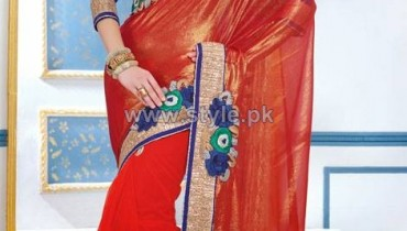 Latest Indian Sarees Designs 2014 For Women 1