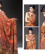 Shaista Cloth Winter Collection 2014 Volume 2 For Women 007