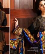 Resham Ghar Winter Dresses 2014 For Women 005