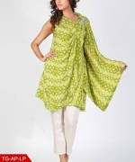 Shamaeel Ansari winter dresses 2014 For Women 002