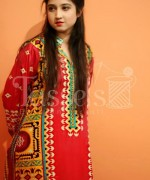 Tassels Winter Dresses 2014 For Women 0010