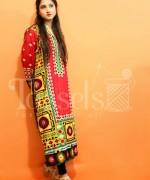 Tassels Winter Dresses 2014 For Women 0013