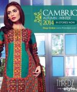 Thredz Cambric Dresses 2014 For Winter 2